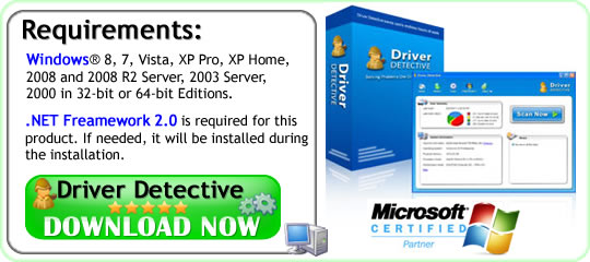 driverdetective exe review